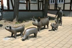 Arfmann Schweinegruppe